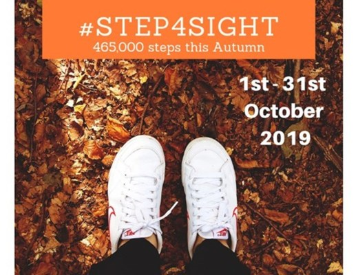 step4sight