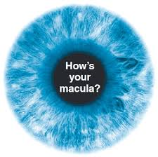 Picture of an eye ball with the macular part saying hows your macula?
