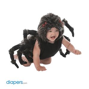 babyspider
