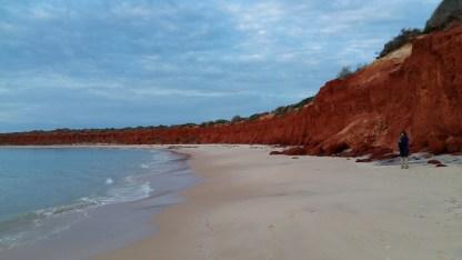 Die Wüste trifft in Shark Bay direkt auf das Meer