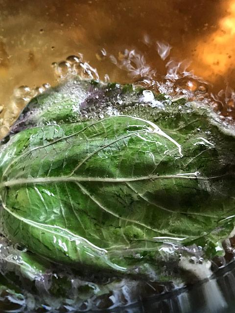 Die frischen Shisoblätter sollten nur auf einer Seite in den Teig gedrückt werden und auf dieser nicht zu heiß frittiert werden. Kurz umdrehen, so das auch das Blatt knusprig wird. Fertig.