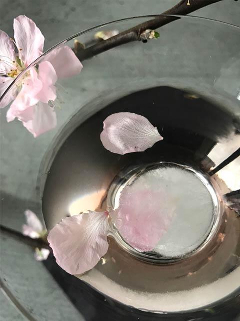 Anstelle der eingelegten Kirschblüten habe ich auch Eiswürfel mit Blütenblättern getestet.