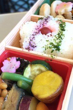 Sakura-Bento: Zur Kirschblüte werden Bentoboxen zubereitet und mit eingelegtem Gemüse in Form von Kirschblüten dekoriert.