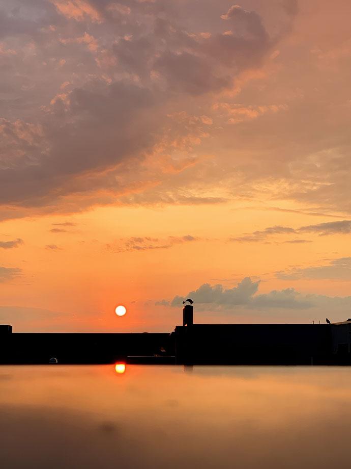 Zeig mir deinen Sonnenuntergang, bei dem du ein Glas Godjira Cuba Libre mit Wood Stork Spiced Rum trinken möchtest!