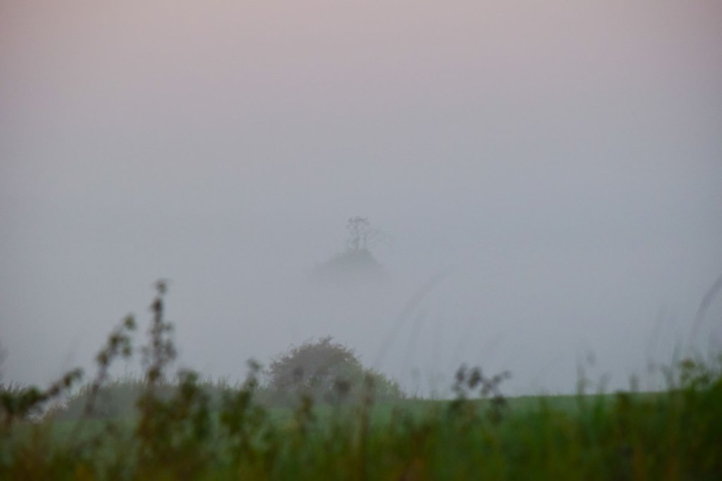 Misty October sussex photographer