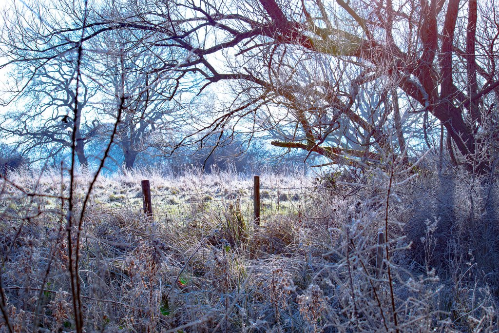 Woodsmill January Sussex photographer