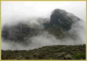 - rwenzori - Mountain Rwenzori National Park Uganda