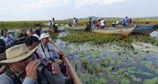 Mabamba Swamp Mabamba Swamp - mabamba shoe bill tour - Mabamba Swamp Shoe Bill Birding Tour