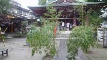 tanabata_2012_013
