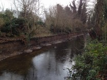 Edging removed, River Crane