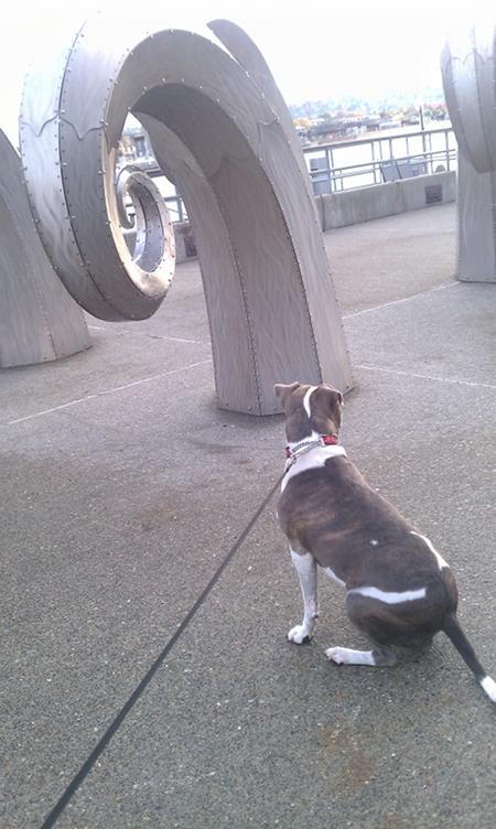 Bella in front of Steel Waves