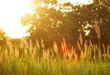 Creative Seasons and Creative Routines