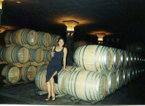 Stellenbosh. Wine capitol of South Africa.