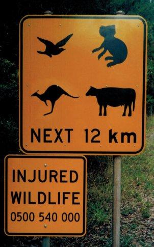Mel Grt ocn rd wildlife sign