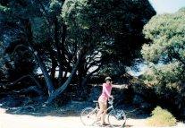 Perth Rottnest biking