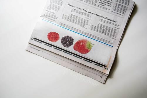 The Berries in Newspaper by Kat Skinner