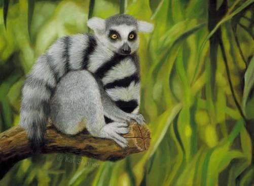 Ring Tail Lemur Pastel Painting by Kat Skinner