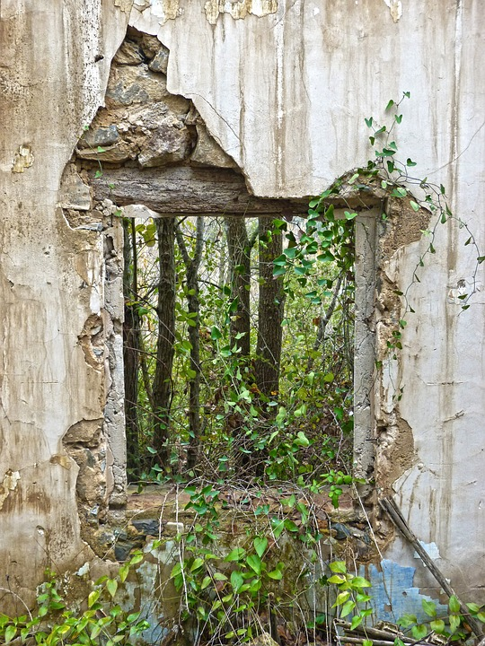 Ikkuna köynnökset