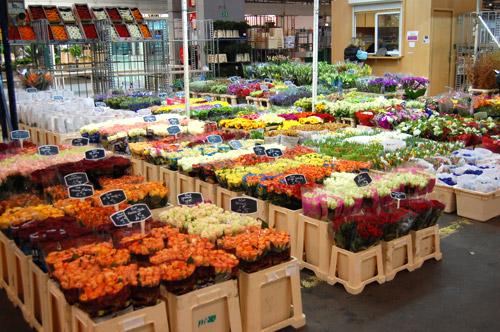 Rungis, pavillon réservé aux fleurs