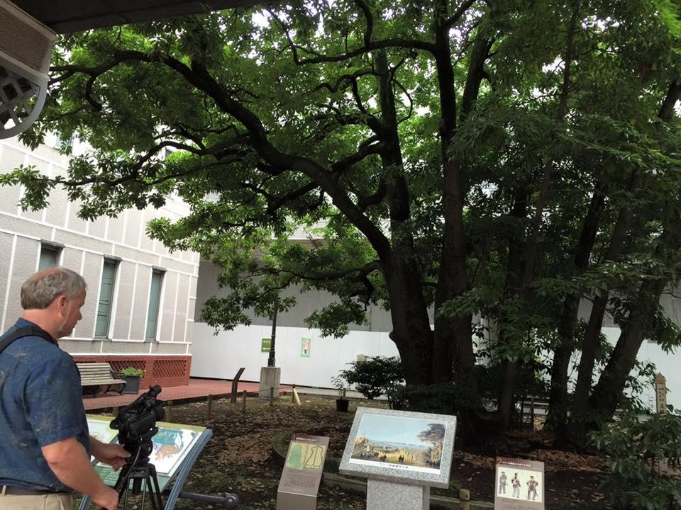 20160629-kgp-jpn-yokohama-pi-003