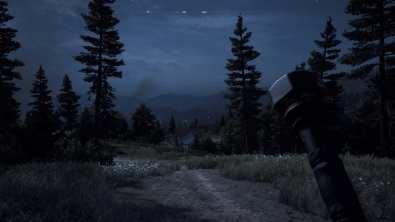 Une nuit dans Far Cry 5