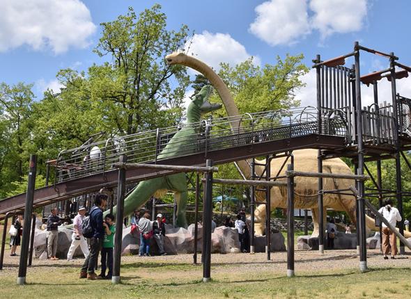 恐竜博物館周辺