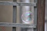 Hubble Bubble (3)