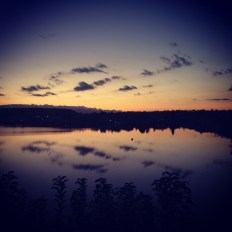 photo_1 (1)