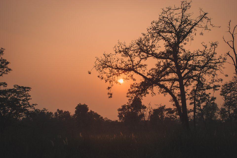 tramonto al Parco Nazionale di Bardia in Nepal