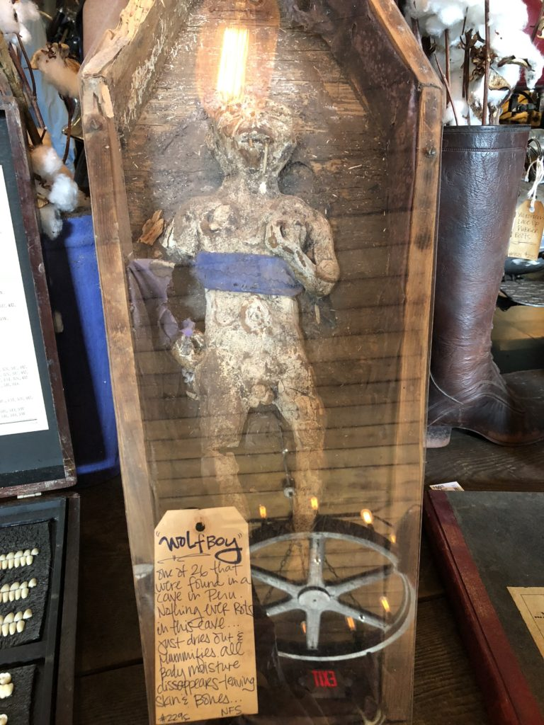 "A small mummified ""Wolf Boy"" in a little wooden coffin with glass top so you can see the mummy."