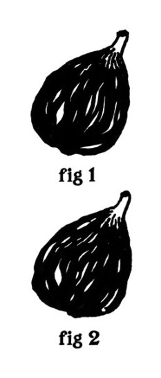 51_russell_weekes_two_figs