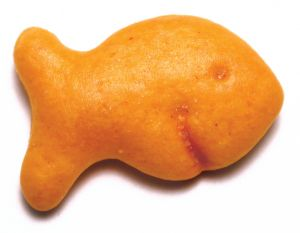 616730_goldfish_cracker[1]