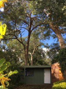 Photo of My Studio in My Garden