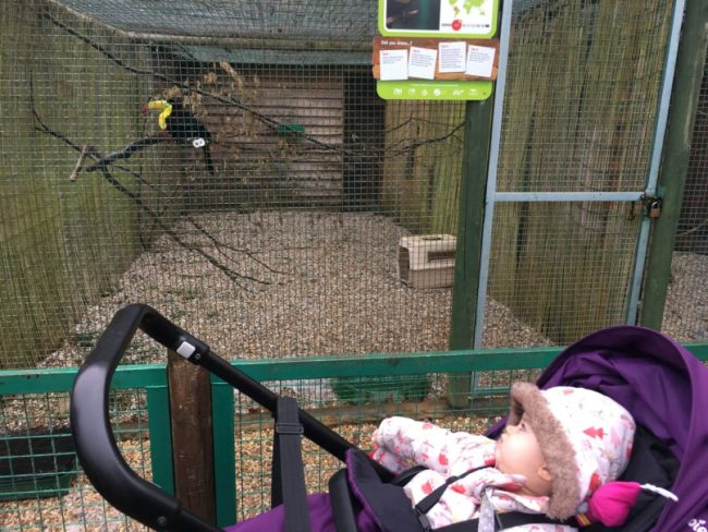 Paradise Wildlife Park Review 10