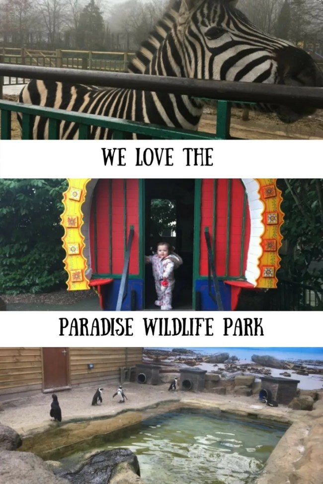 We went to the Paradise Wildlife Park in Broxbourne recently. Find out what we thought and take a look around for yourself. Days out in Essex, Hertfordshire, UK