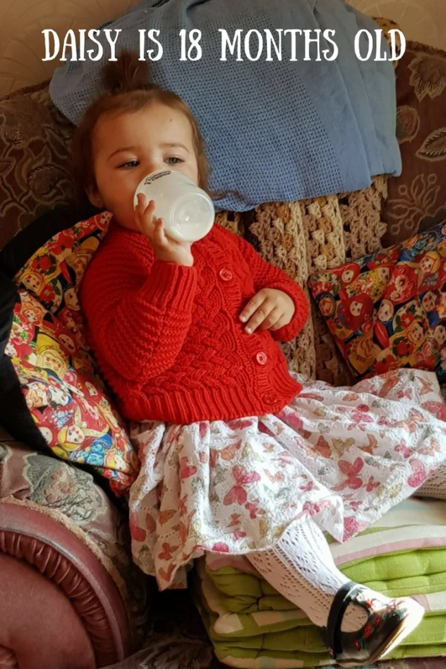 Daisy is 18 months old - Find out more about what she has been up to, what milestones she has hit and what new toys she is loving