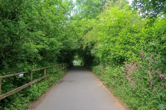 Bluestone Wales - Walkway to swimming