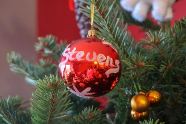 Our real Christmas tree - The Stevens