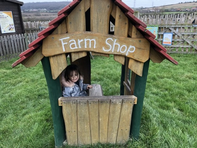 Lee Valley Park Farms - Daisy in the Farm Shop