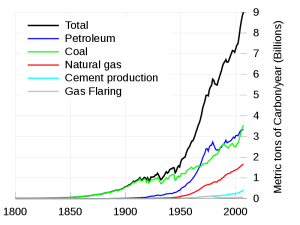 Global fossil carbon emissions 1800–2007