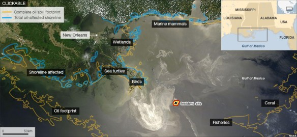 "BBC NEWS Go to article here for the interactive version from: BBC NEWS: ""BP Oil Spill: The Environmental Impact 1 year on"""