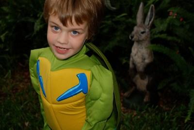 Leonardo Bunny