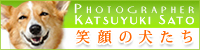 Egao_no_inutachi_Banner_200
