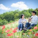 (C) Katsuyuki Sato / Kworks,Inc.