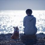 Copyright (C) Katsuyuki Sato / K works.