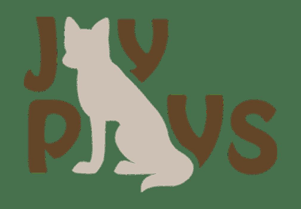 JayPlays Logo