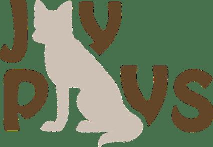 Commission: JayPlays Logo.