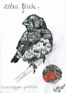 Pen and Ink illustration with Acrylic and Pencil.