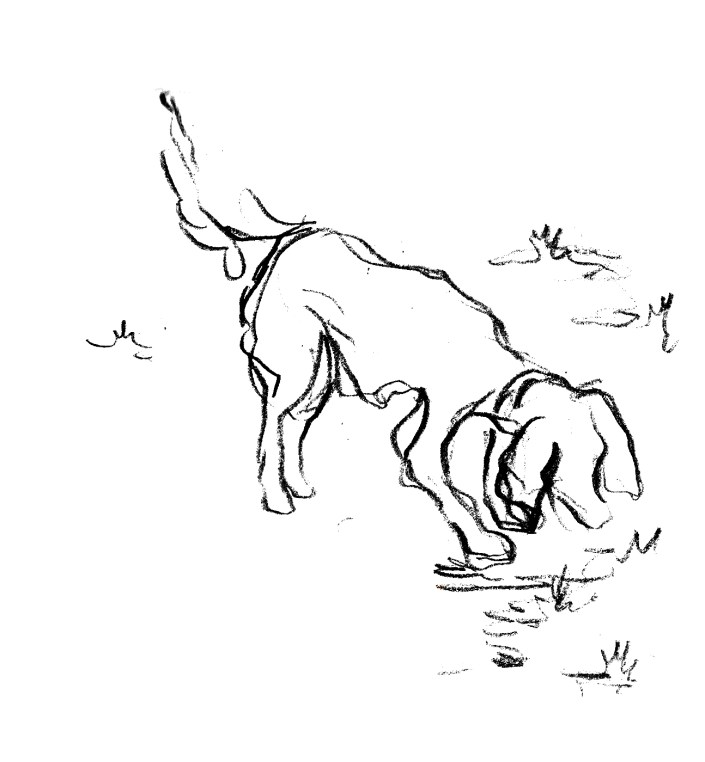 Flush sniffing grass