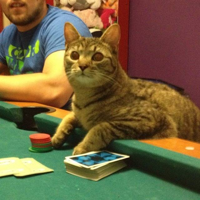 Goober playing poker
